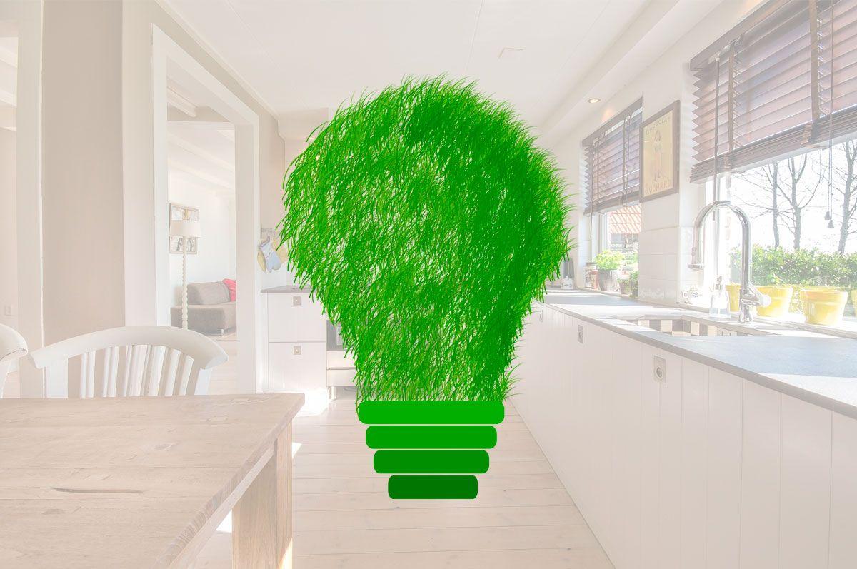 Arranca la sexta edición de Hogares Verdes